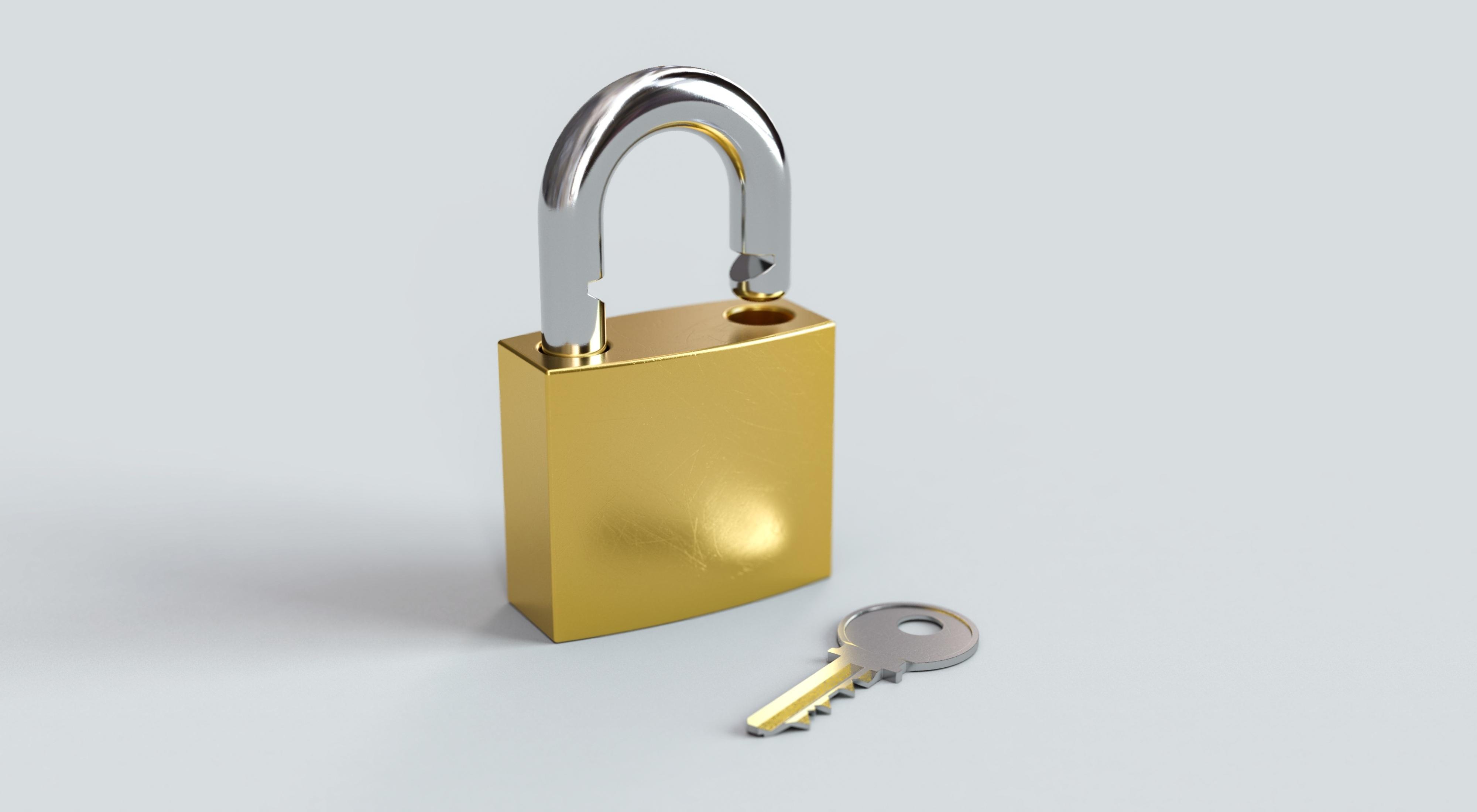 SAP Identity Access