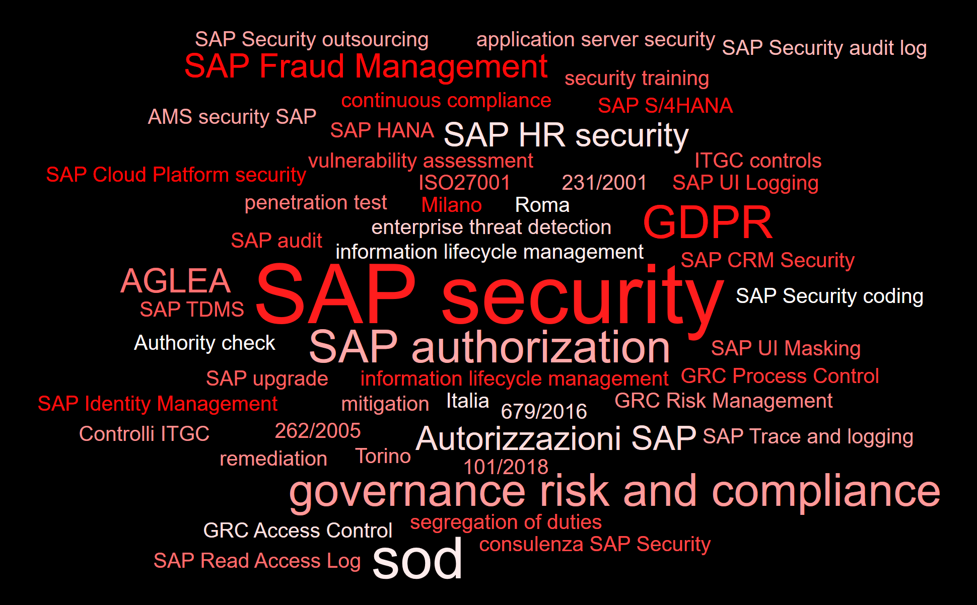 Consulenza SAP Security